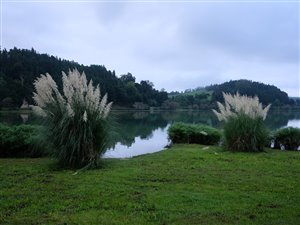 Furnas Lake.